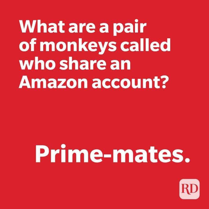 Monkey joke