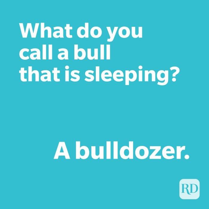 Bull joke