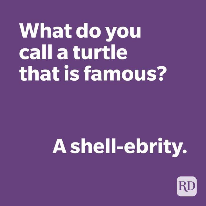 Turtle joke