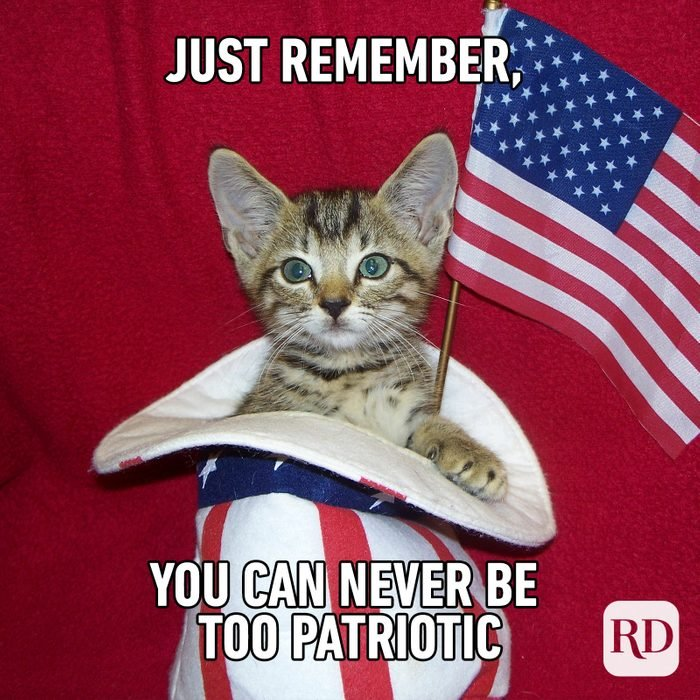 Meme text: Just remember, you can never be too patriotic