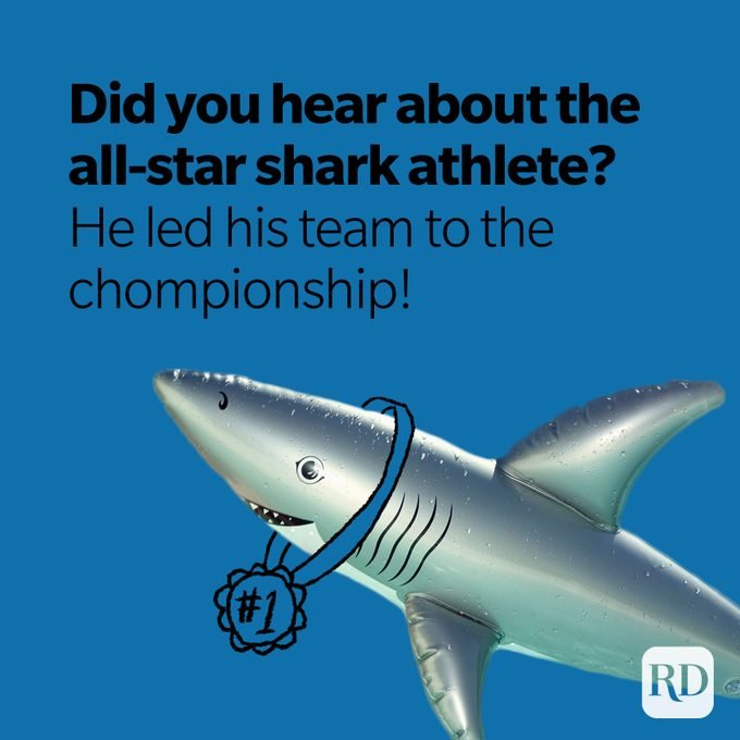 Shark wearing first place medal