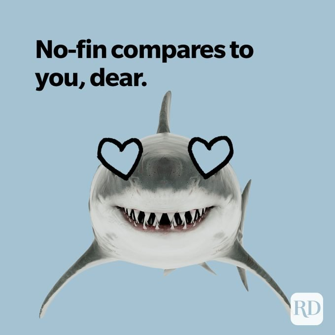 Shark with hearts for eyes