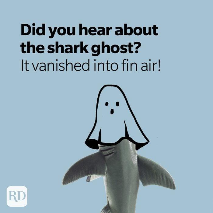 Shark wearing sheet on head to emulate ghost