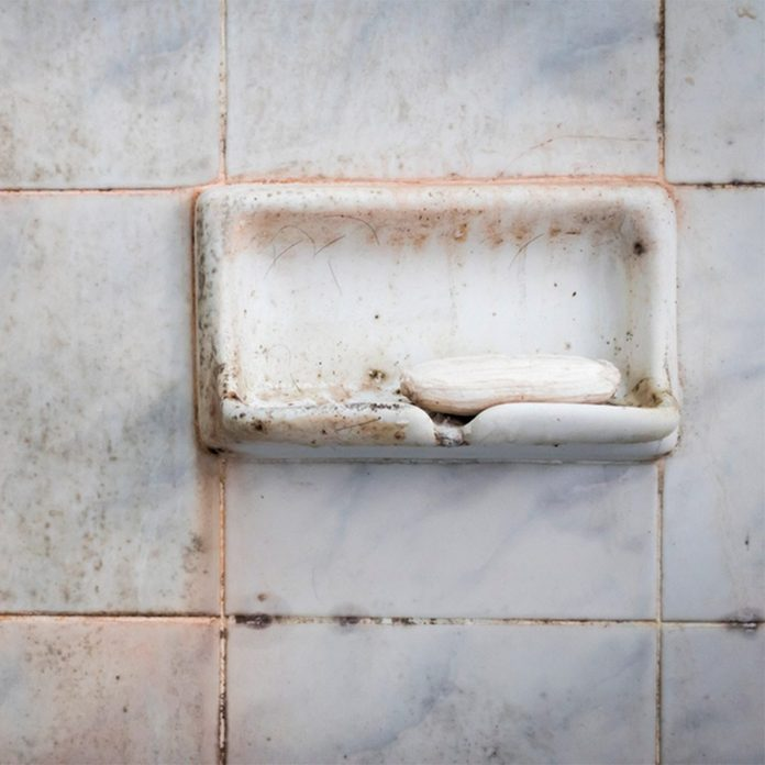 close up of shower wall with pink stuff