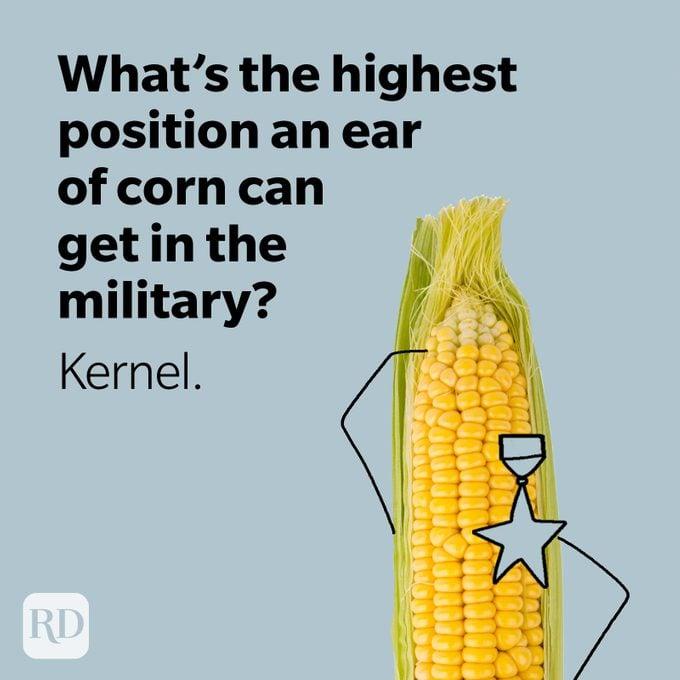 Corn cob wearing a military badge