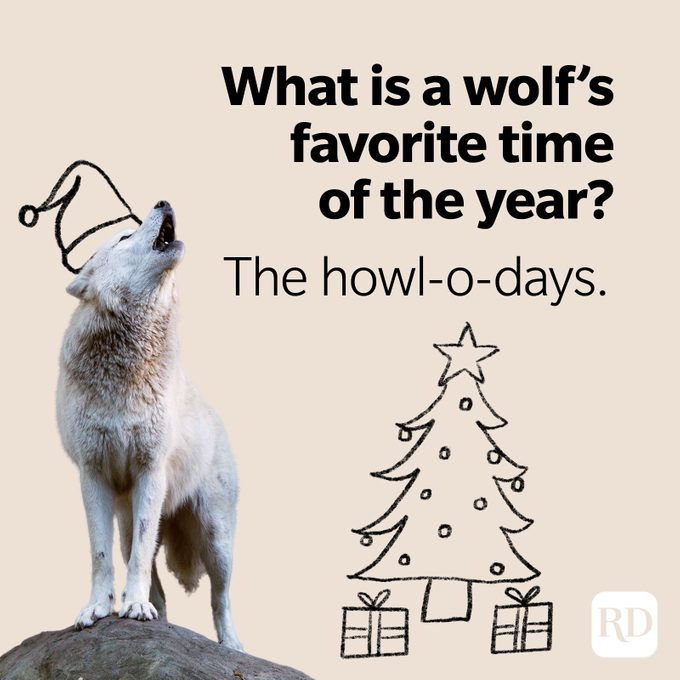 Wolf Puns Howl O Days