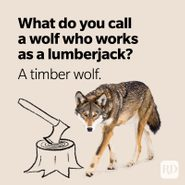 25 Wolf Puns That Are Howlingly Funny