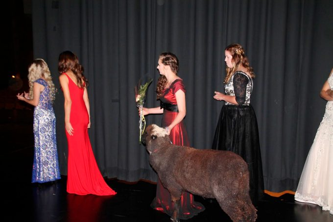 Grace on stage with Esther the goat at Homecoming