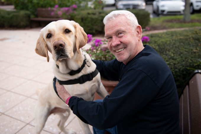 service dog and veteran together