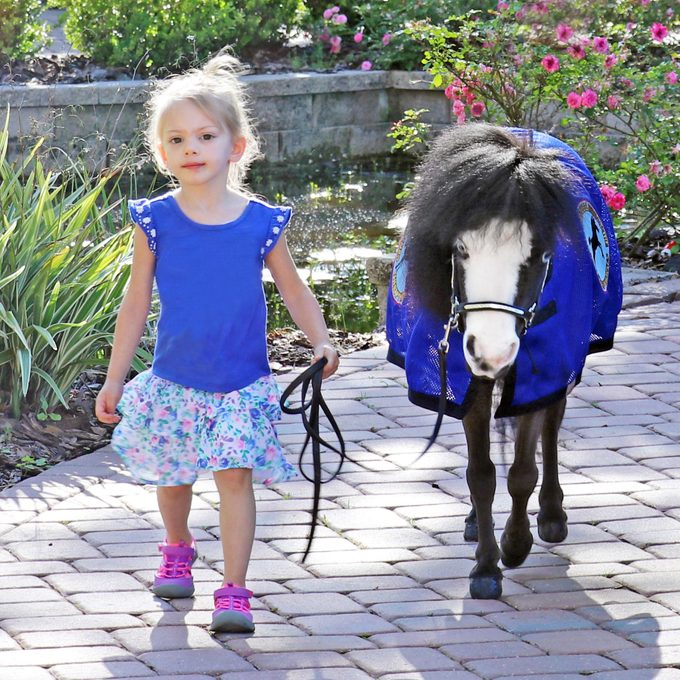 child standing and holding the reins with Magic, the therapy miniature horse