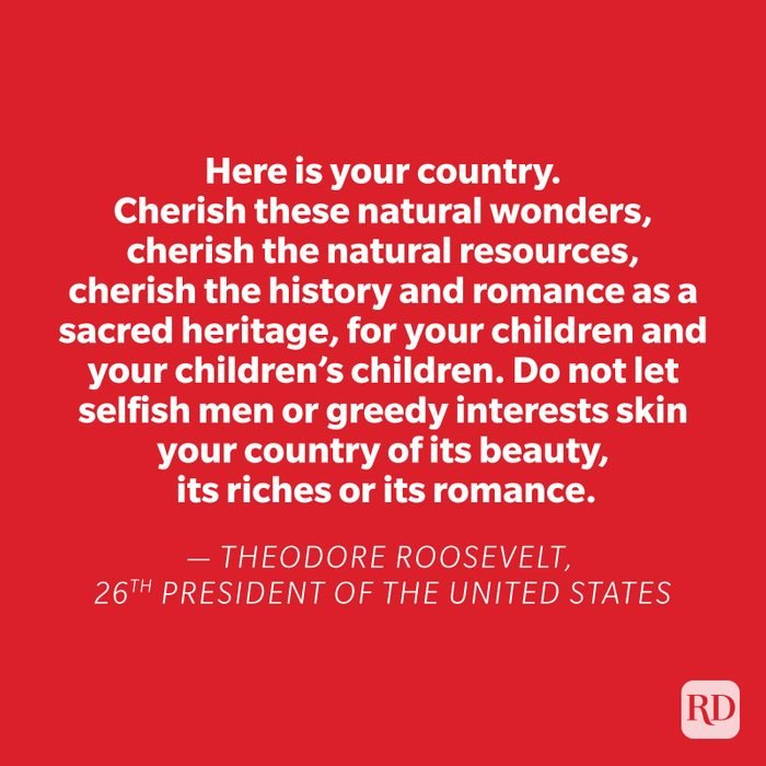 Theodore Roosevelt quote on red