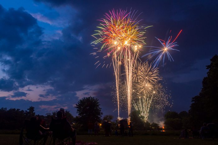 A fourth of July firework display above a forest park, people seated on the lawn watching.