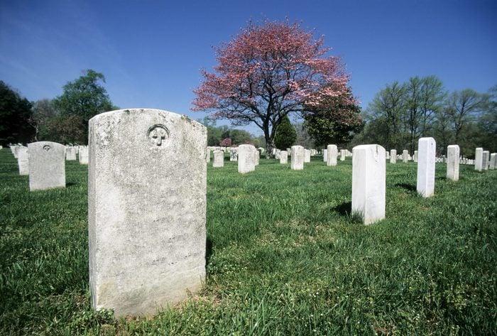 Arlington National Cemetery in Bloom