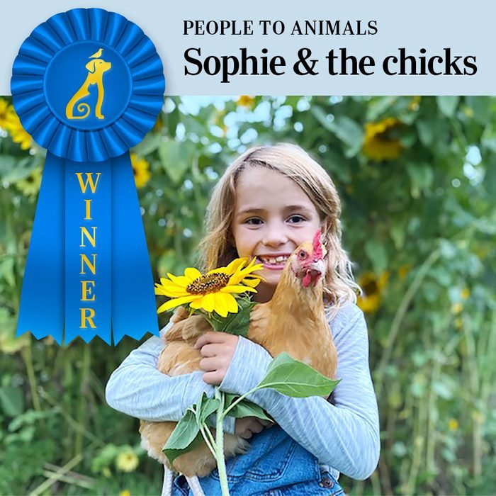 Pet Pals Winner, People to Animals category. Sophie holding one of the chickens and a sunflower with sunflower stalks in the background
