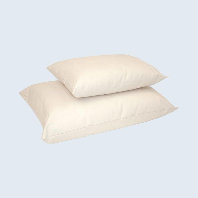 Naturepedic Organic Cotton Pillow