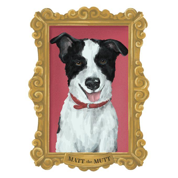 Portrait of Matt The Mutt the dog in a frame