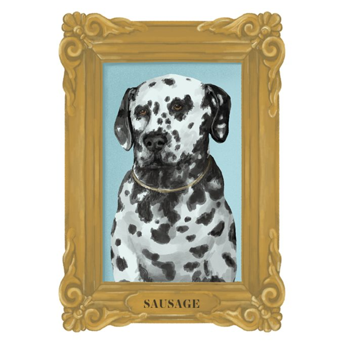 Portrait of Sausage the dog in a frame