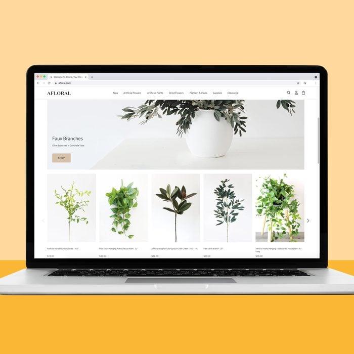 Afloral.com house plant source