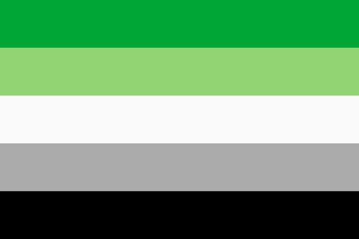 Aromantic Flag