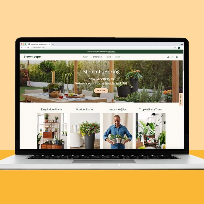 Buying house plants on Bloomscape.com