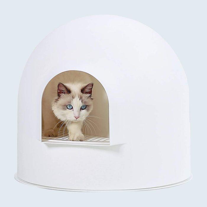 Secret Igloo Cat Litter Box Enclosure