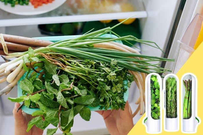 Herbs In The Fridge with inset of herb preserver