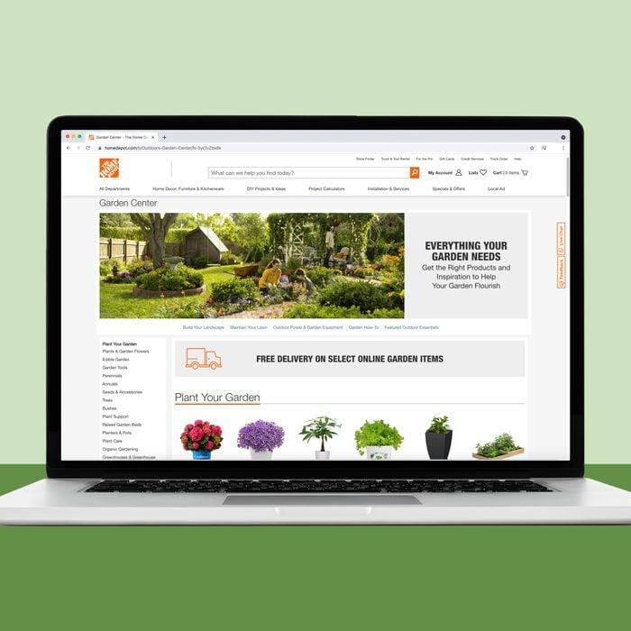 Home Depot house plants online