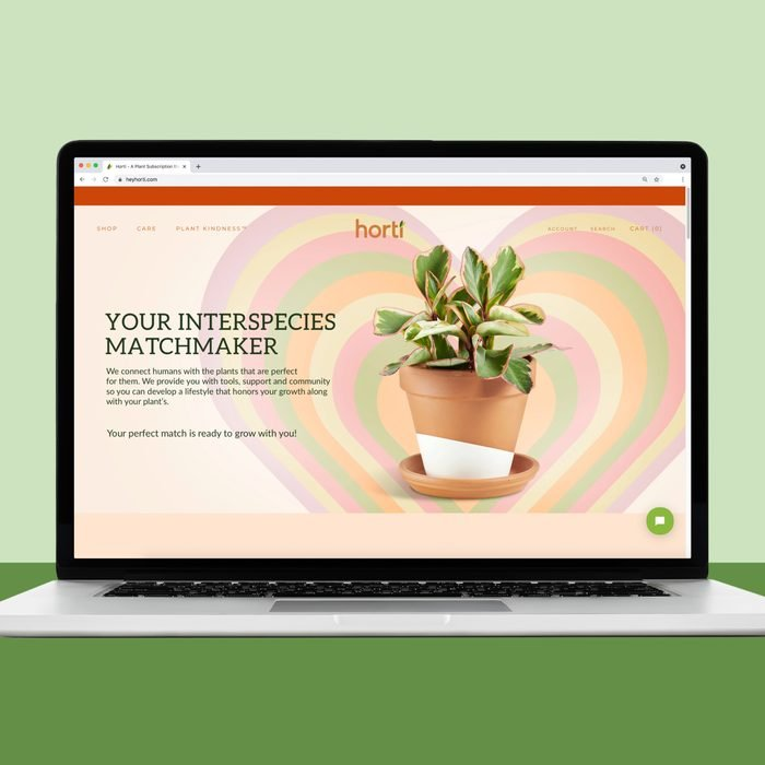 Horti, a website to buy house plants