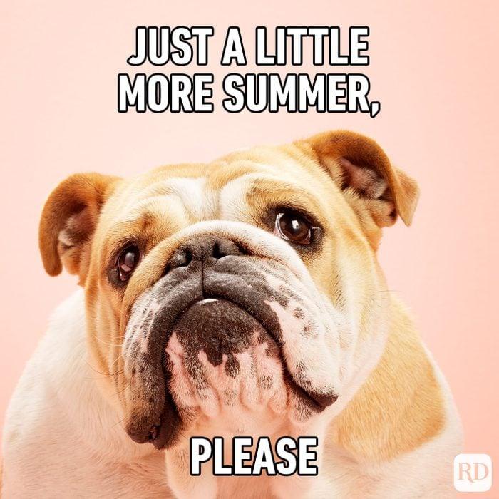 Meme text: Just a little more summer, please