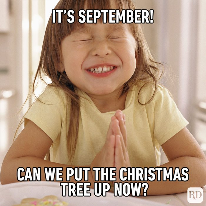 Meme text: It's September! Can we put the Christmas tree up now?