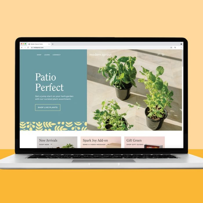 Buying plants on modern sprout website