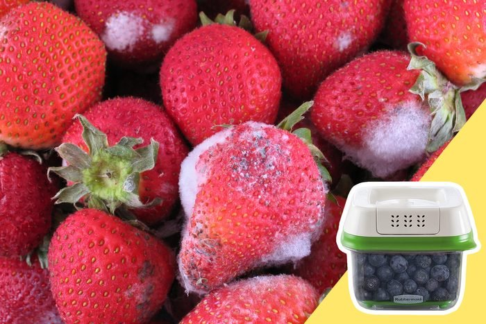 Moldy Berries with inset of berry container