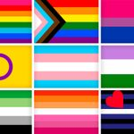 The Meaning Behind 24 LGBTQ Pride Flags
