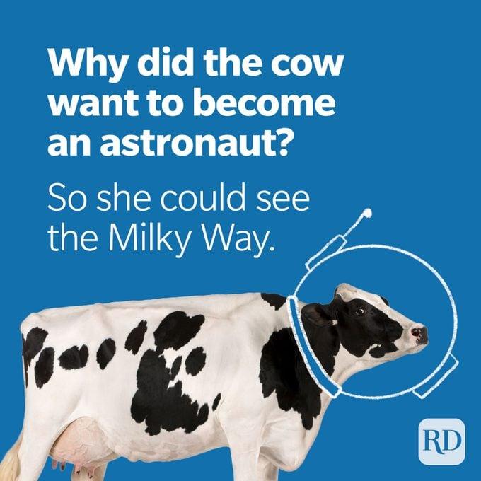 Space Puns Cow Astronaut