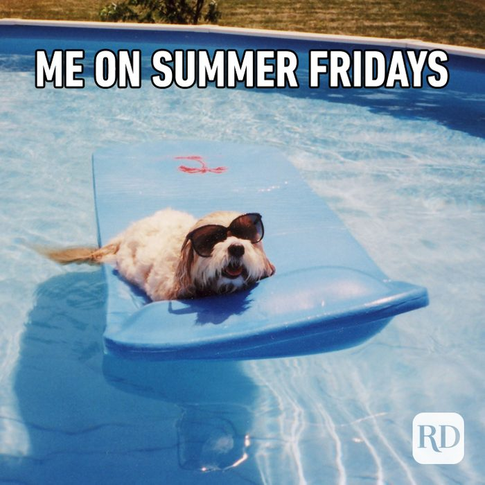 Meme text: Me on summer Fridays