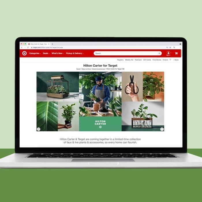 Target house plants online