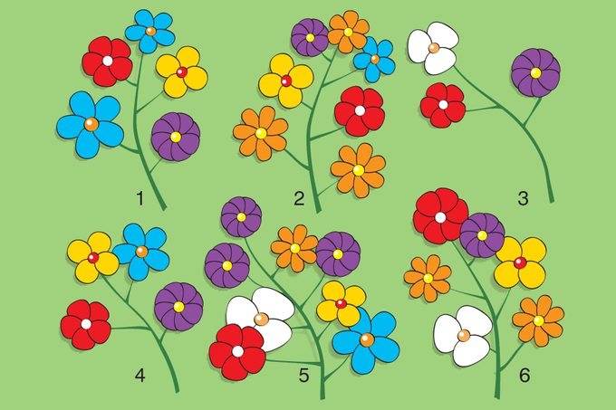 Illustration of six numbered flower branches