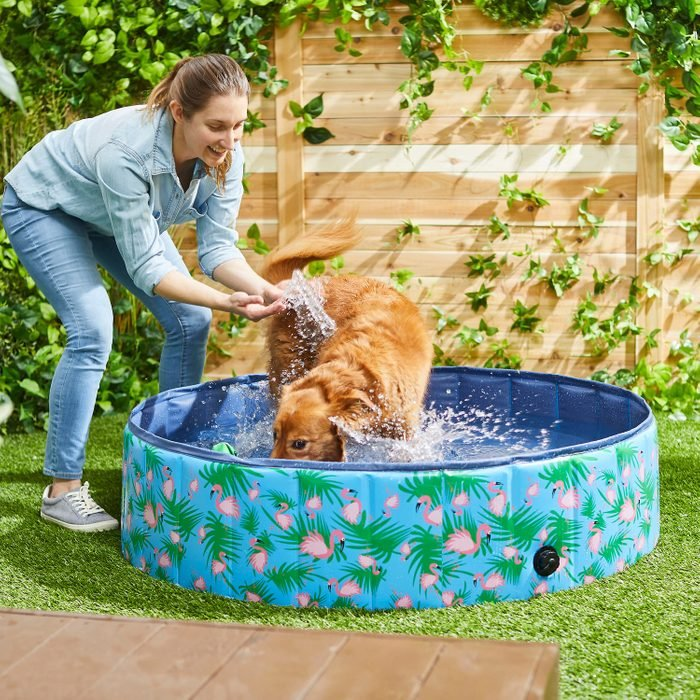 Frisco Outdoor Dog Pool