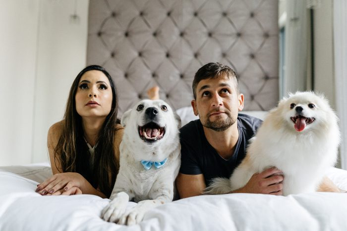 Couple and dogs watching TV in their bedroom