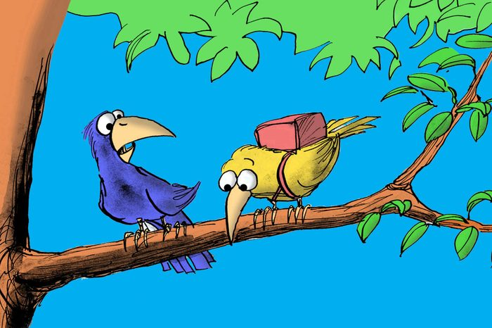 Cartoon illustration of two birds, one is surprised the other is scared to fly and is wearing a parachute.