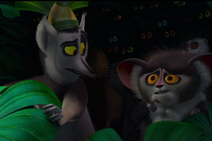 Scene from Madagascar