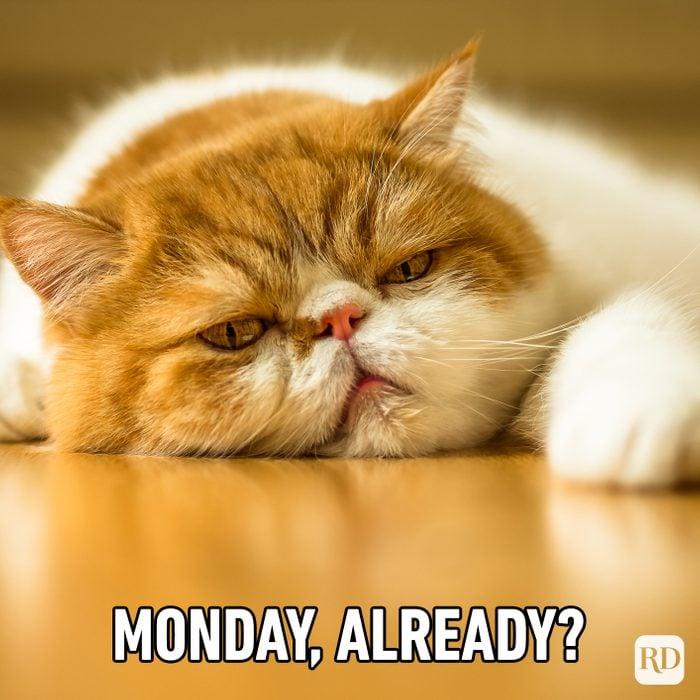 Monday, Already?