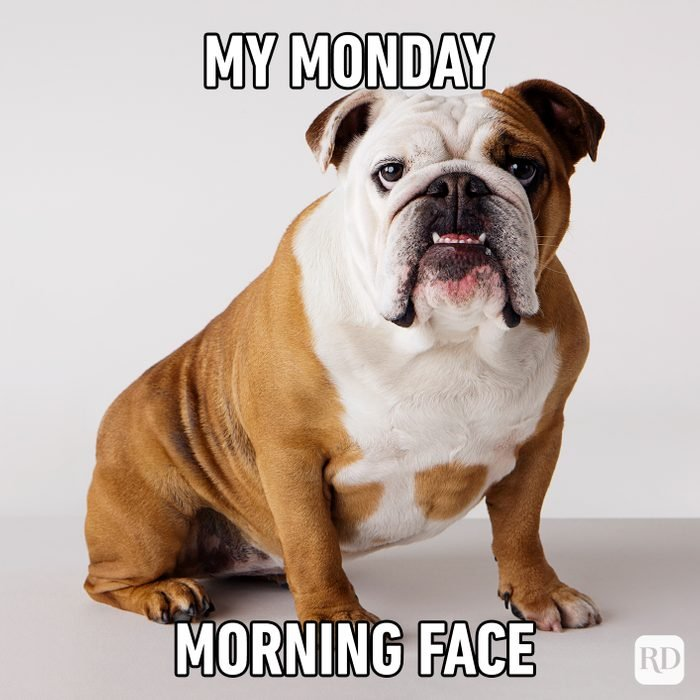 My Monday Morning Face