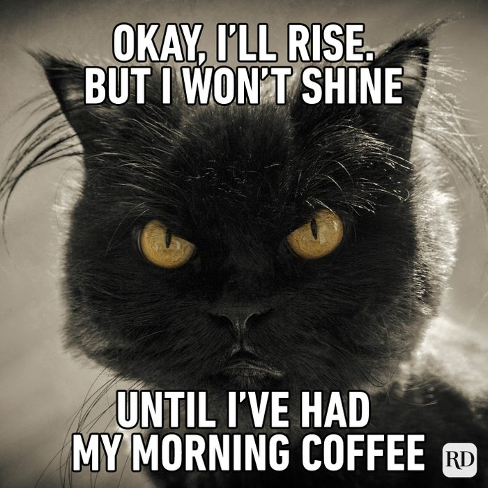 Okay, I'll Rise. But I Won't Shine Until I've Had My Morning Coffee