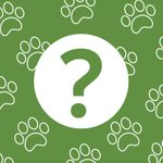 30 Animal Riddles That Are Serious Mind Benders
