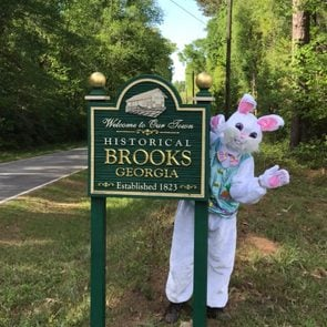 Brooks Georgia