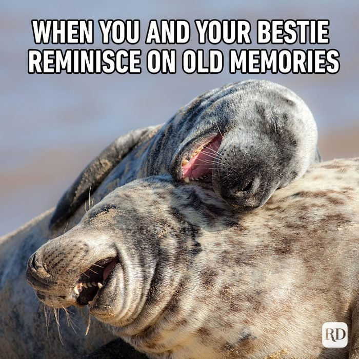 Meme text: When you and your bestie reminisce on old memories