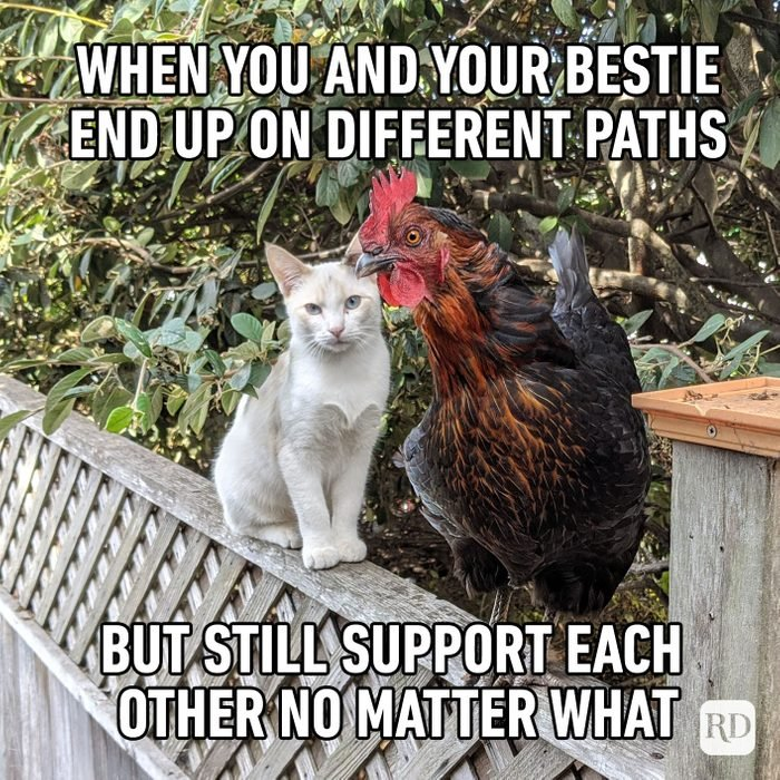 When you and your bestie end up on different paths but still support each other no matter what