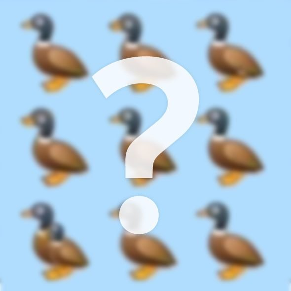 Duck puzzle image blurred with question mark superimposed