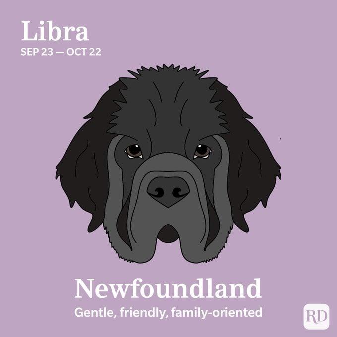 Libra: Newfoundland